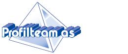 Logo Profilteam